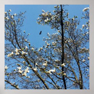 sky in spring poster