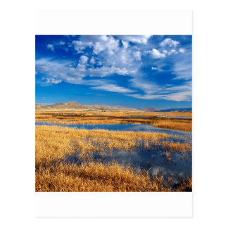 Sky Lower Klamath Lake Nature Postcard