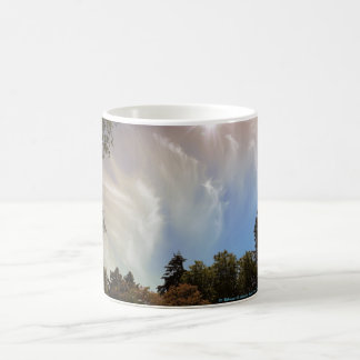 Sky over Seattle Zoo Coffee Mug