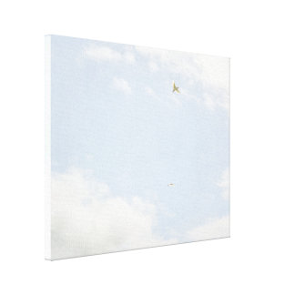 Sky with Birds Canvas Print