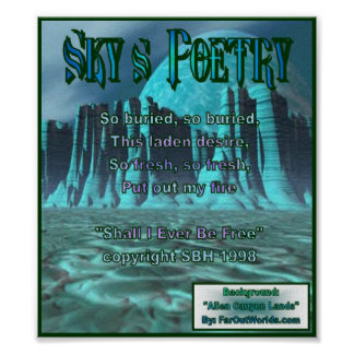 Sky's Poetry-Banner 90 Poster