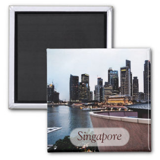 Skyscraper Views : Singapore Magnet