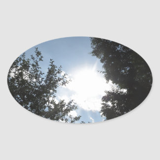 SKYview Nature Cosmos Science Universe NVN684 GIFT Oval Sticker