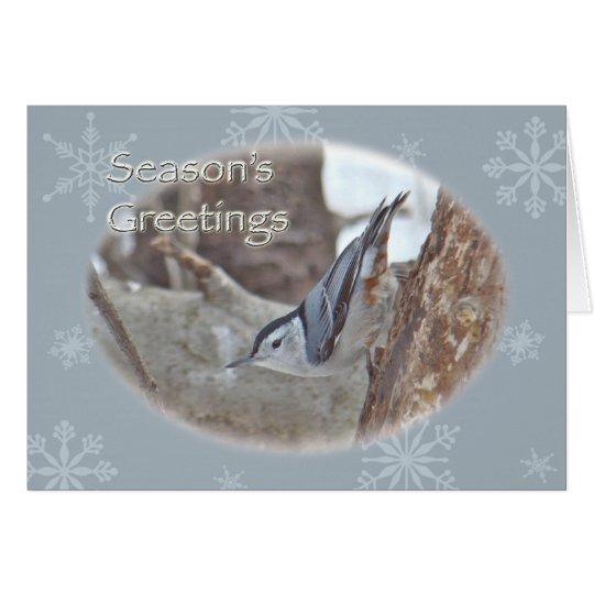 Slate Grey Nuthatch Songbird Seasons Greeting Card