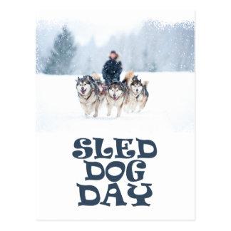 Sled Dog Day - Appreciation Day Postcard