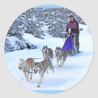 Sled Dog Racing Classic Round Sticker