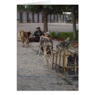 Sled dogs in Denali, Alaska Card