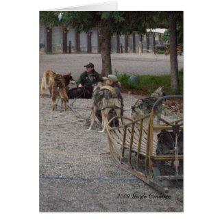 Sled dogs in Denali, Alaska Greeting Card