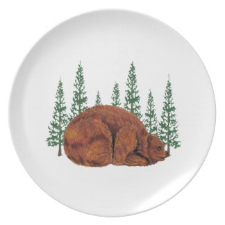SLEEP JUST RIGHT PLATE