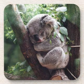 Sleeping Baby Koala Coaster