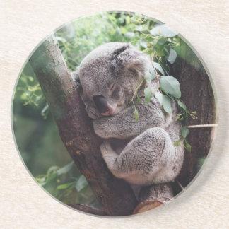 Sleeping Baby Koala Drink Coasters