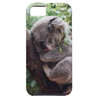 Sleeping Baby Koala iPhone 5 Case
