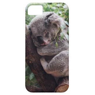 Sleeping Baby Koala iPhone 5 Cover