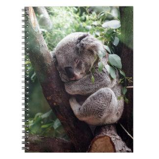 Sleeping Baby Koala Notebooks