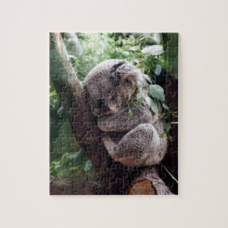 Sleeping Baby Koala Puzzle