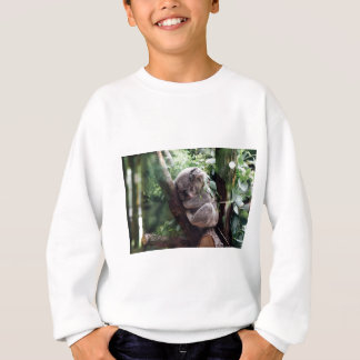 Sleeping Baby Koala Sweatshirt