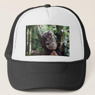 Sleeping Baby Koala Trucker Hat