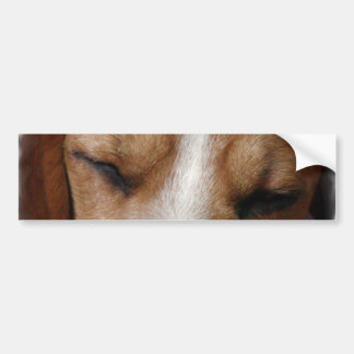Sleeping Beagle Bumper Sticker