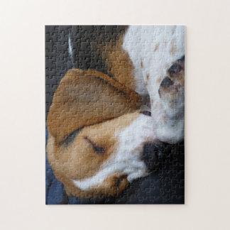 Sleeping Beagle Jigsaw Puzzle