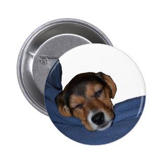 Sleeping Beagle Puppy Button