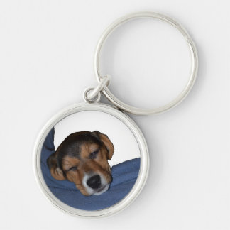 Sleeping Beagle Puppy Keychain
