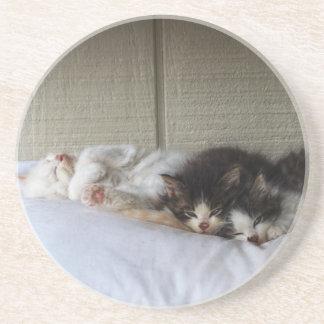 Sleeping Beauties Coaster