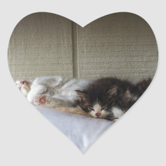 Sleeping Beauties Heart Sticker