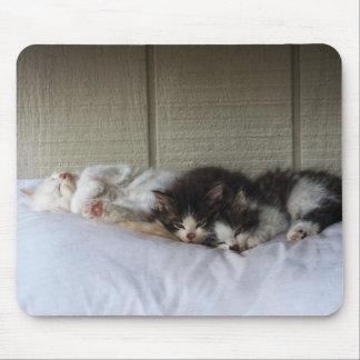 Sleeping Beauties Mouse Pad