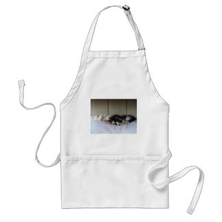 Sleeping Beauties Standard Apron