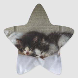 Sleeping Beauties Star Sticker