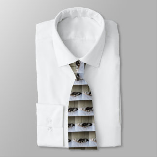 Sleeping Beauties Tie
