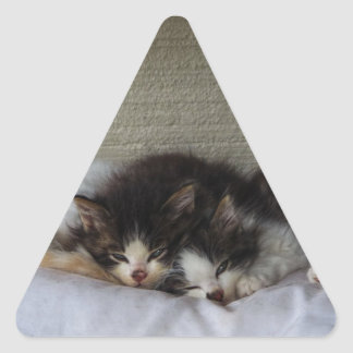 Sleeping Beauties Triangle Sticker