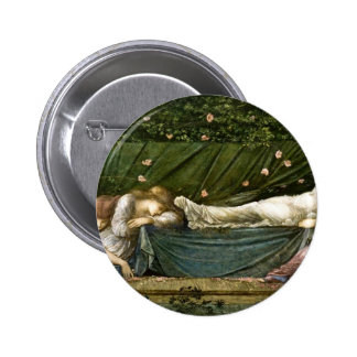 sleeping-beauty-pictures-4 pinback buttons