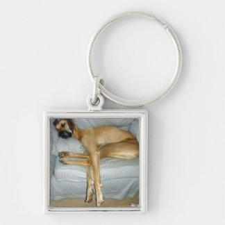 Sleeping Beauty Silver-Colored Square Key Ring