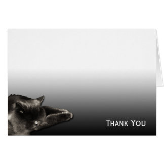 Sleeping Black Cat on Black Gradient Card