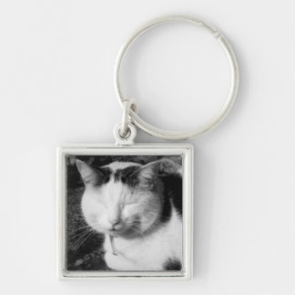 Sleeping Black & White Cat Silver-Colored Square Key Ring