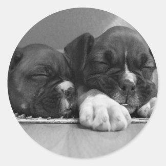 Sleeping Boxer puppies stickers