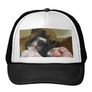 Sleeping Boxer puppy baseball cap Mesh Hat