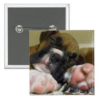 Sleeping Boxer puppy button