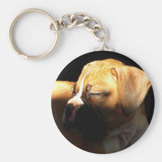 Sleeping boxer puppy keychain