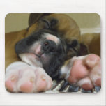Sleeping Boxer puppy mousepad