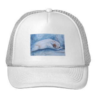 Sleeping Buddies Hat