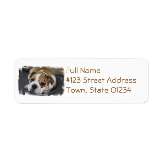 Sleeping Bulldog Address Labels