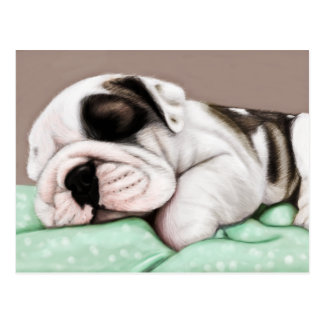 Sleeping Bulldog Puppy Postcard
