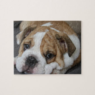Sleeping Bulldog Puzzle