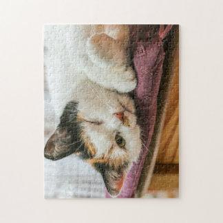 Sleeping Calico Cat Jigsaw Puzzle