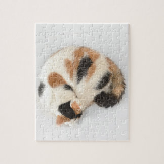 Sleeping Calico Cat Photo Puzzle and Gift Box