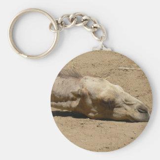 Sleeping camel basic round button key ring