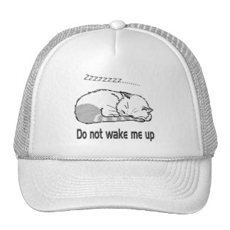 sleeping cat 2 cap