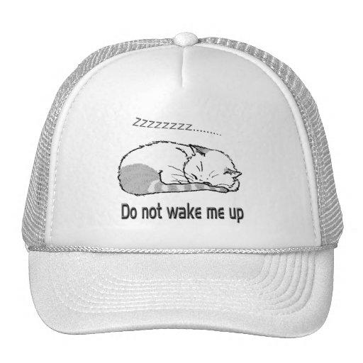 sleeping cat 2 trucker hats